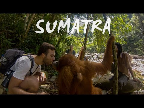 Travelling in Sumatra with a backpack | GoPro