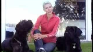 Bart Bellon Dog Training Dvd