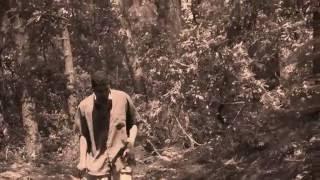 Jann Halexander  ' Les Couleurs de l'Automne' [Vincent Ahn]