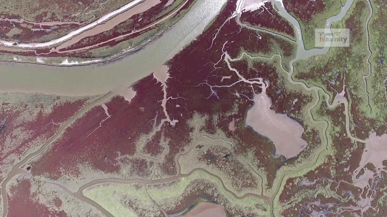 Το μαγευτικό Δέλτα του Αξιού από ψηλά | Axios River Delta Drone Greece