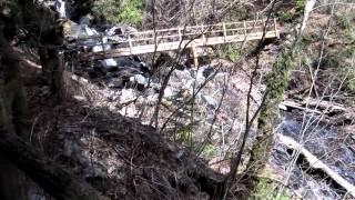 安倍の大滝まで100m 静岡梅ヶ島温泉遊歩道