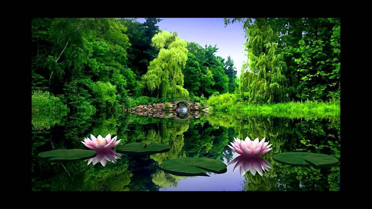 Самая красивая природа! Смотрите супер фото природы! - YouTube
