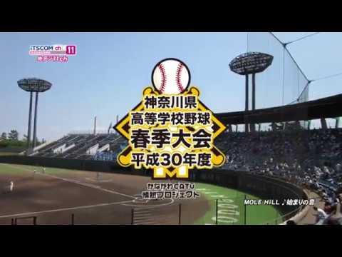 高校野球 神奈川大会 2018春CM