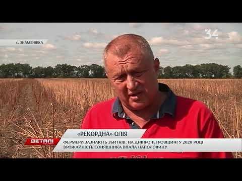 34 телеканал: Майже 30 000 гривень за тонну масла: в Україні фіксують рекордні ціни на соняшникову олію