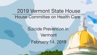 Vermont State House - Suicide Prevention in Vermont 2/14/19