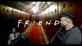 Friends - мопс и компания