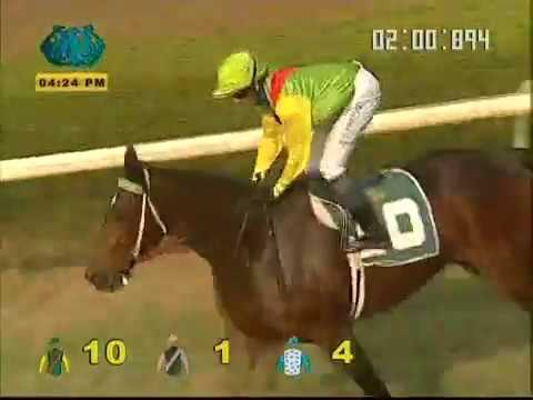 The S. M. Shah Eclipse Stakes of India (Gr.2)  Winner - SMASHER