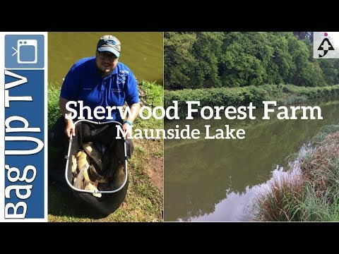 Sherwood Forest Fishery - BagUp TV - Maunside - Match Win - Live Match Fishing Footage - 14/05/2017