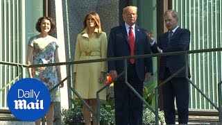 Donald Trump meets Finnish president Sauli Niinisto - Daily Mail