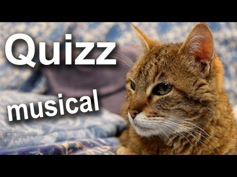 QUIZZ DU CHAT MUSICAL - PAROLE DE CHAT