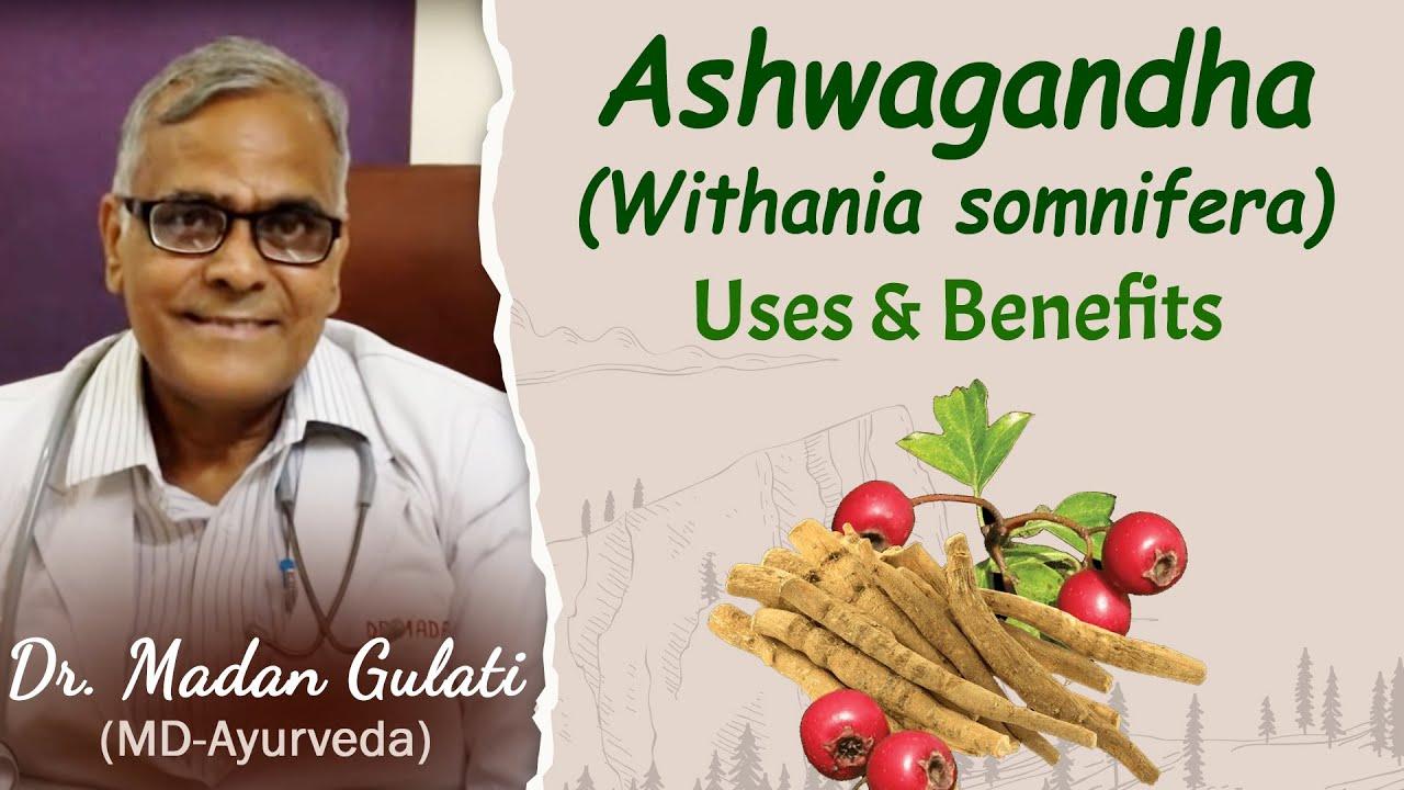 Ashwagandha Capsules - Usage, Dosage and Benefits - Planet