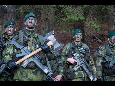 Försvarsmakten: Warriors Of The World [Manowar]