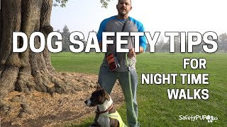 Dog Safety Tips For Nighttime Dog Walking