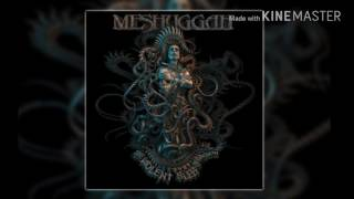 meshuggah by the ton