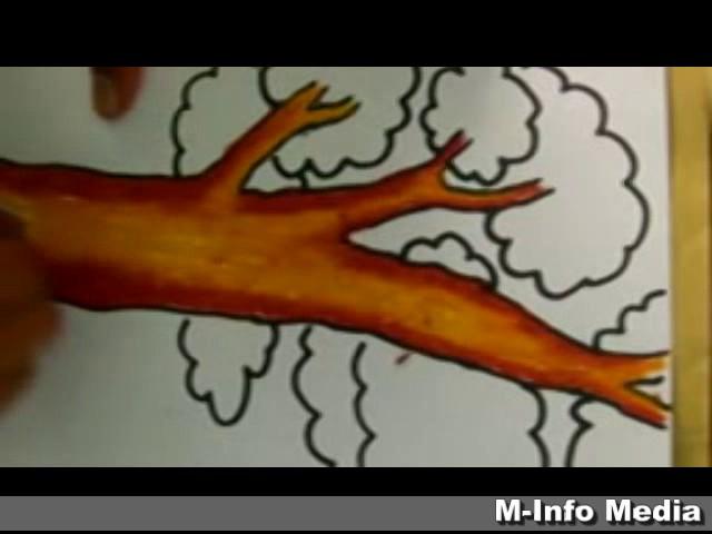 Tutorial Mewarnai Pohon Dengan Cara Gradasi Warna Menggunakan Crayon