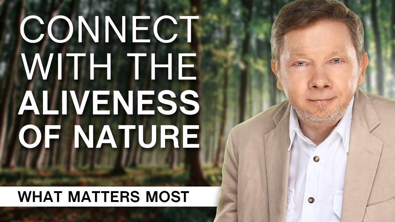 Download School of Awakening: How to Connect with the Aliveness of Nature (Part 1)