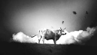 Bull of Heaven - Her Name is Unending