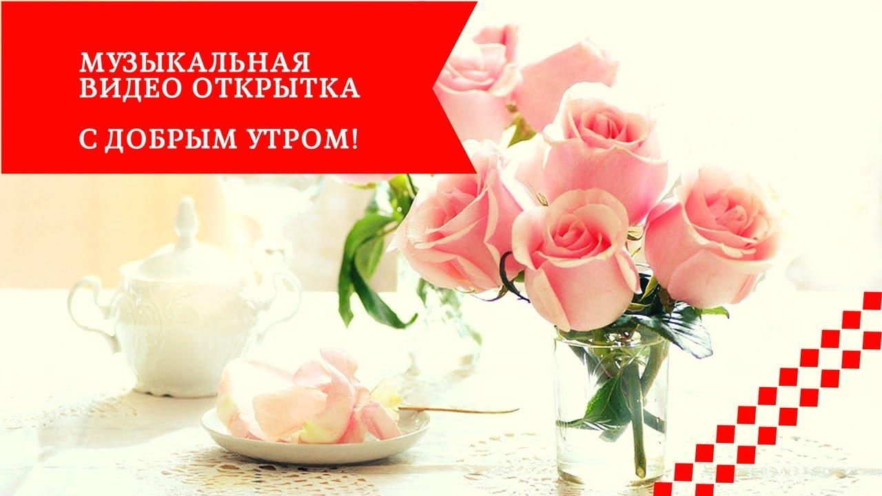 Прикольные видео открытки с добрым утром на телефон, днем валентина