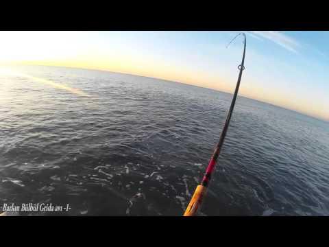 Kıyıdan Grida avı Antalya -1-  (Ocak 2016)