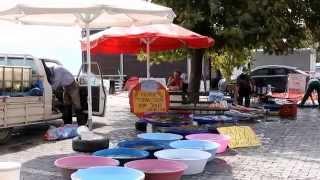 Gölyazı köyü Bursa - balık pazarı 2014