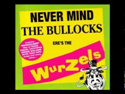 The Wurzels - It Wasn't Me