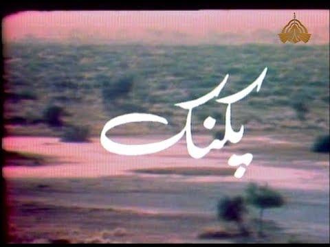 pakistani ptv old classical play drama picnic  cast: usman peerzada + sameena peerzada