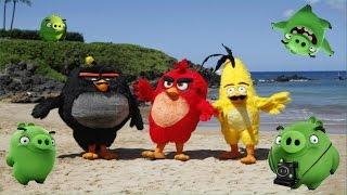 БАССЕЙН ЗЛЫЕ ПТИЧКИ ЧЕЛЛЕНДЖ ЦВЕТНЫЕ ШАРИКИ ANGRY BIRDS SWIMMING POOL CHALLENGE COLORFUL BALLS