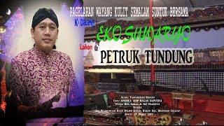 Gambar cover Wayang Kulit Ki Dalang Eko Suwaryo Lakon PETRUK TUNDUNG