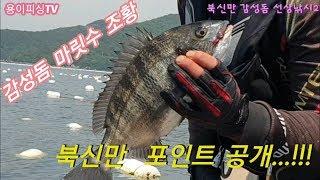 Ep.6 통영 북신만 감성돔낚시2/포인트 공개/삼우 빅…