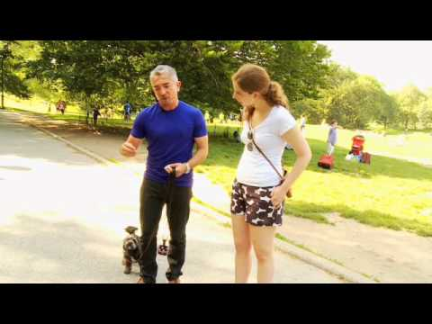 dog-whisperer-exclusive:-training-a-difficult-dog---woman's-day-magazine