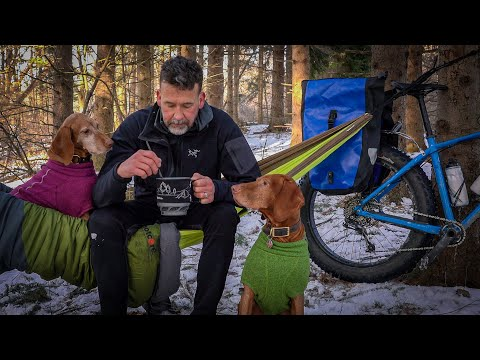 Lunch in a Hammock with my Vizsla /  Winter Camping Setup / Best Dog Breed for Mountain/Fat Biking