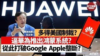 【晨早直播】中國多謝美國逼華為推出鴻蒙系統? 從此打破Google、Apple壟斷? 任正非謀略超一流? 21年6月3日