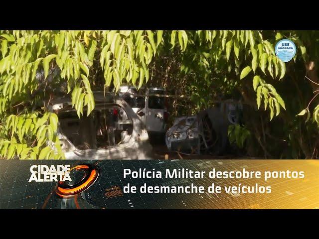 Polícia Militar descobre pontos de desmanche de veículos em região de mata