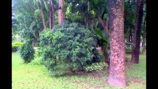 Van phong ao ngay trung tam Quan 8, Tp. Hồ Chí Minh; Call: 0917283444, 0917936444