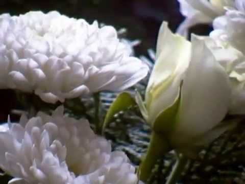 Flowers and their meanings pearl wedding anniversary youtube