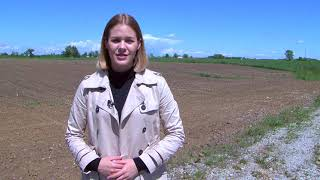 Agrokultura 12. svibnja 2019.