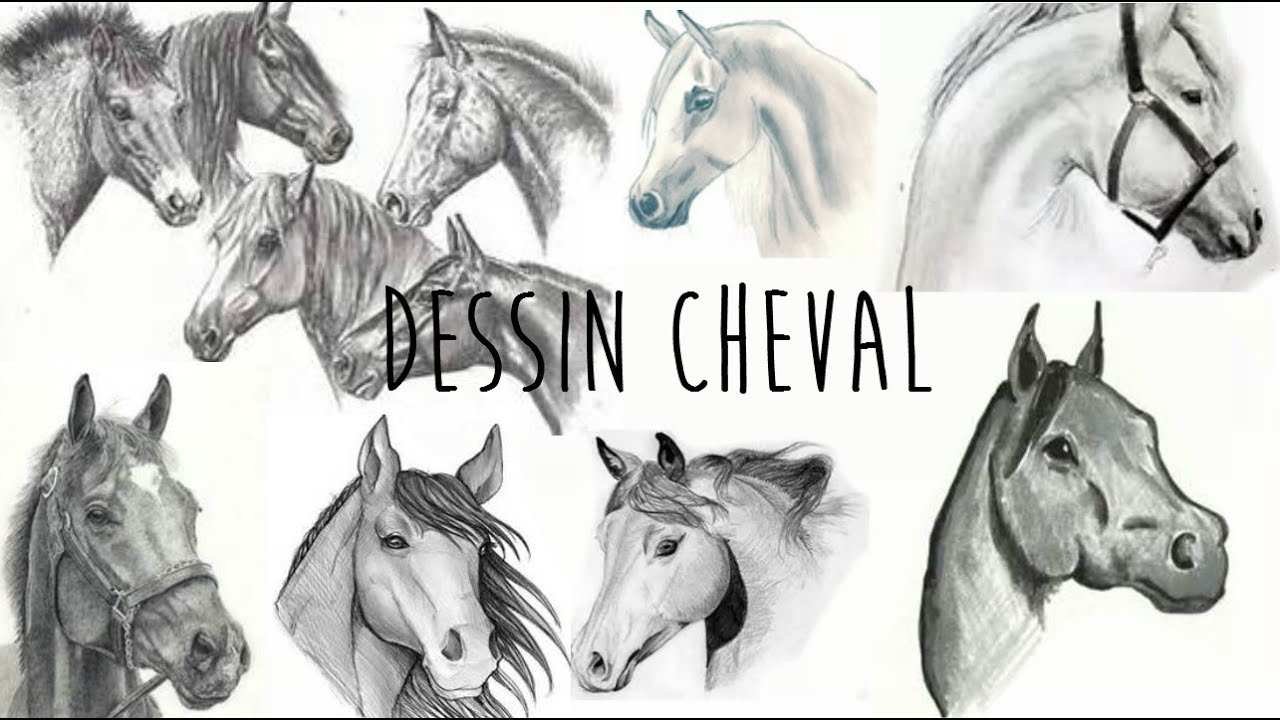 Dessin cheval youtube - Des dessin de cheval ...