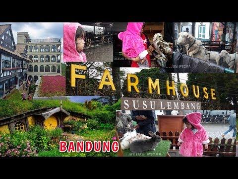 farm-house-susu-lembang-bandung-|-destinasi-wisata-akhir-tahun-di-kota-bandung