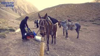 Гаучо на Аконкагуа - Аргентинские ковбои, ведут караваны экспедиций на Аконкагуа