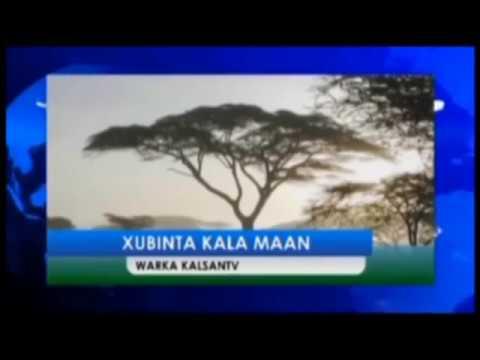 XUBINTA KALAMAAN KALSAN TV 25 09 2018