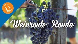Weinroute: Entdecke Ronda und seine Weinberge