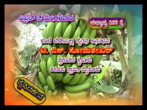Krishidarshan Programs on DD Chandana | 02-04-19 | Promo
