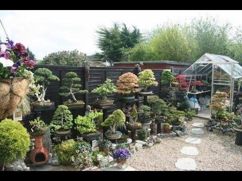building bonsai garden