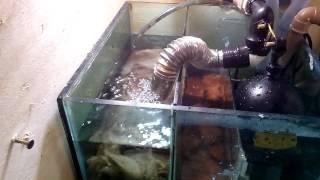 B ia com v lvula esf rica 1 e 3 4 multipec related for Silenciador cisterna