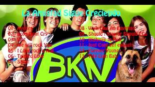 bkn   la amistad sigue creciendo cd 1   01   aveces
