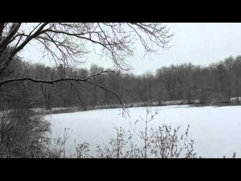 Let It Snow sung by Andy Williams (HD)