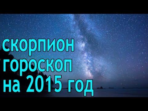Гороскоп 2015 - 2016 год Обезьяны