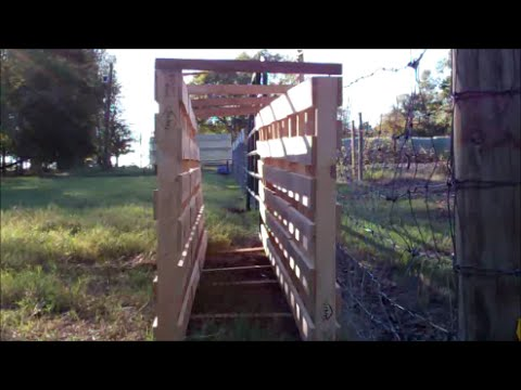 Small Livestock Working Chute From Pallets Youtube