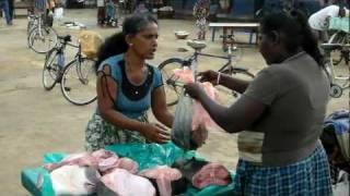 Sri-Lanka Negombo Шри-Ланка Негомбо fishmarket before ocean FullHD 1080p