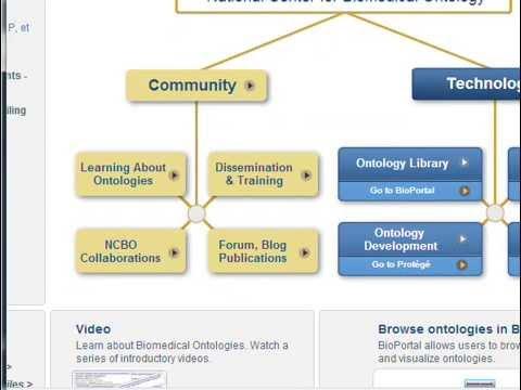 Ontologies Draft - Class 08 - Web & Semantic Web